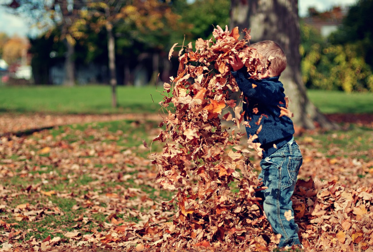 Five Fun Things To Do With Your Kids These Holidays!